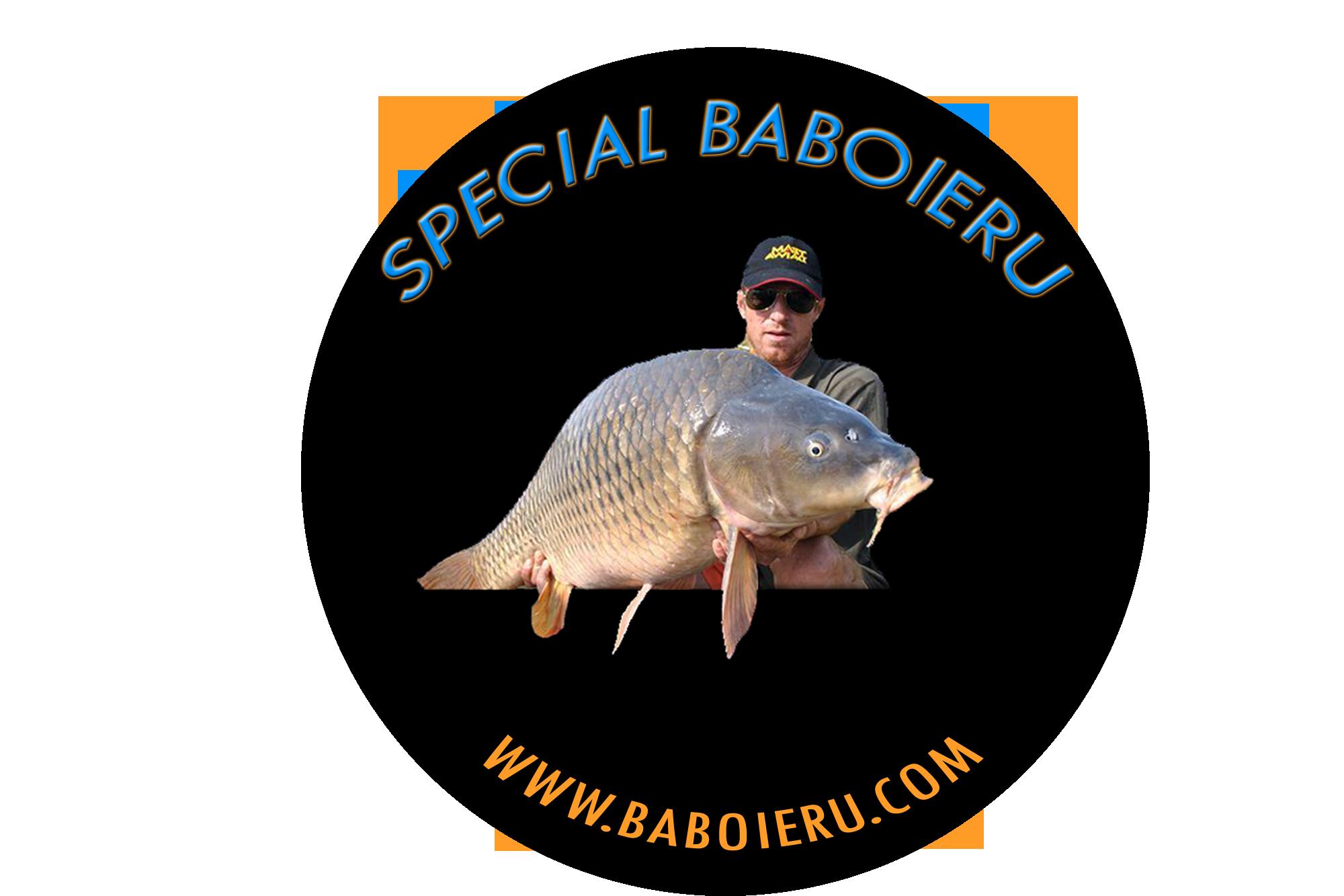 logo-bab